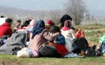 Migrationsforscher Knaus für europäischen Migrationsfonds