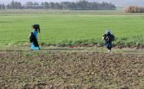 Spahn für Verschiebung des UN-Flüchtlingspakts