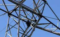Grosskraftwerk Mannheim droht früheres Aus