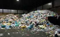 Neuer Höchststand bei Verpackungsabfällen