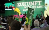 Grüne wollen Klimaschutz im Grundgesetz verankern