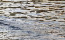 Niedrigwasser beschert Binnenschifffahrt Rekordminus